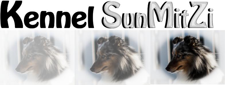 Velkommen til SunMitZi Kennel